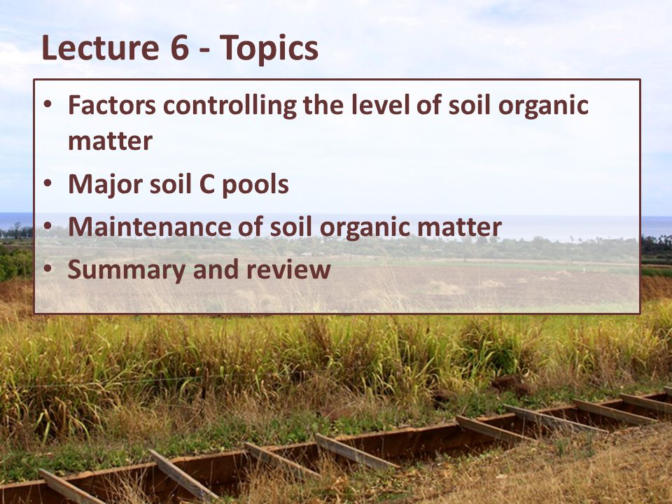 Lecture 6 - Topics Factors controlling the level of soil organic matter. Major soil C pools. Maintenance of soil organic matter.