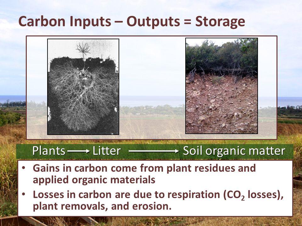 Carbon Inputs – Outputs = Storage