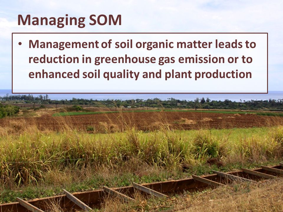 Managing SOM Management of soil organic matter leads to reduction in greenhouse gas emission or to enhanced soil quality and plant production.