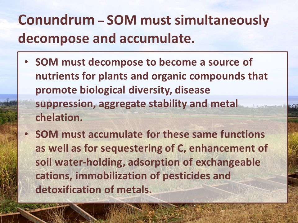 Conundrum – SOM must simultaneously decompose and accumulate.