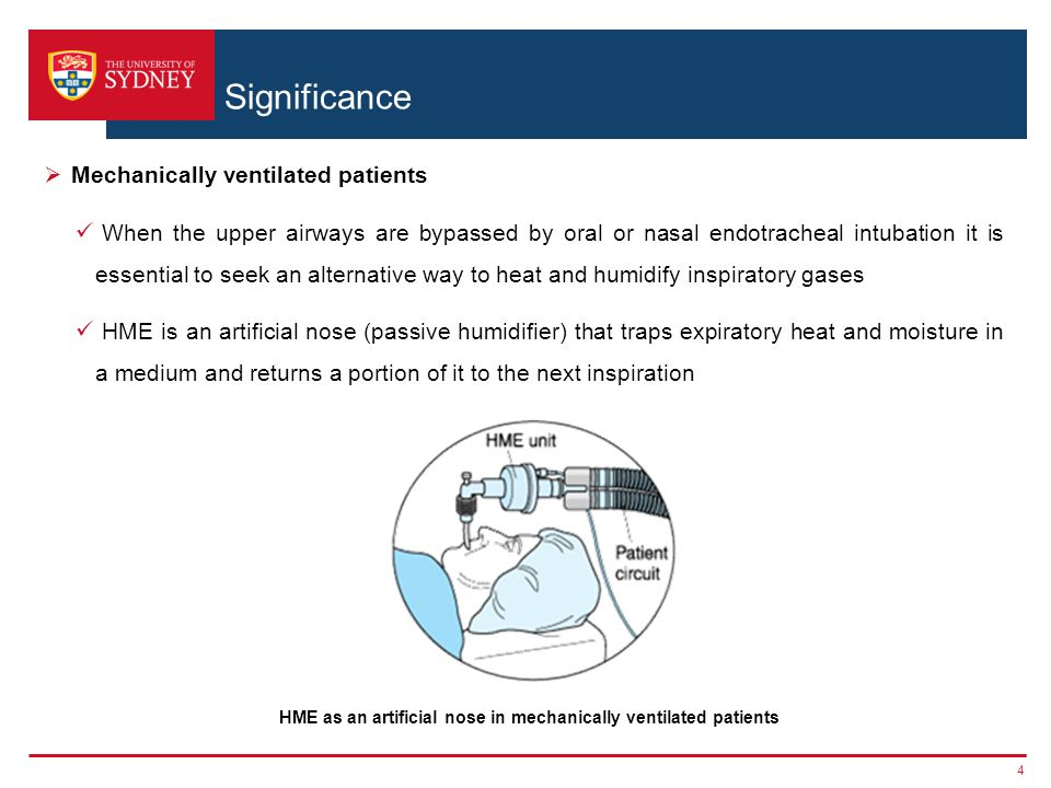 HME as an artificial nose in mechanically ventilated patients