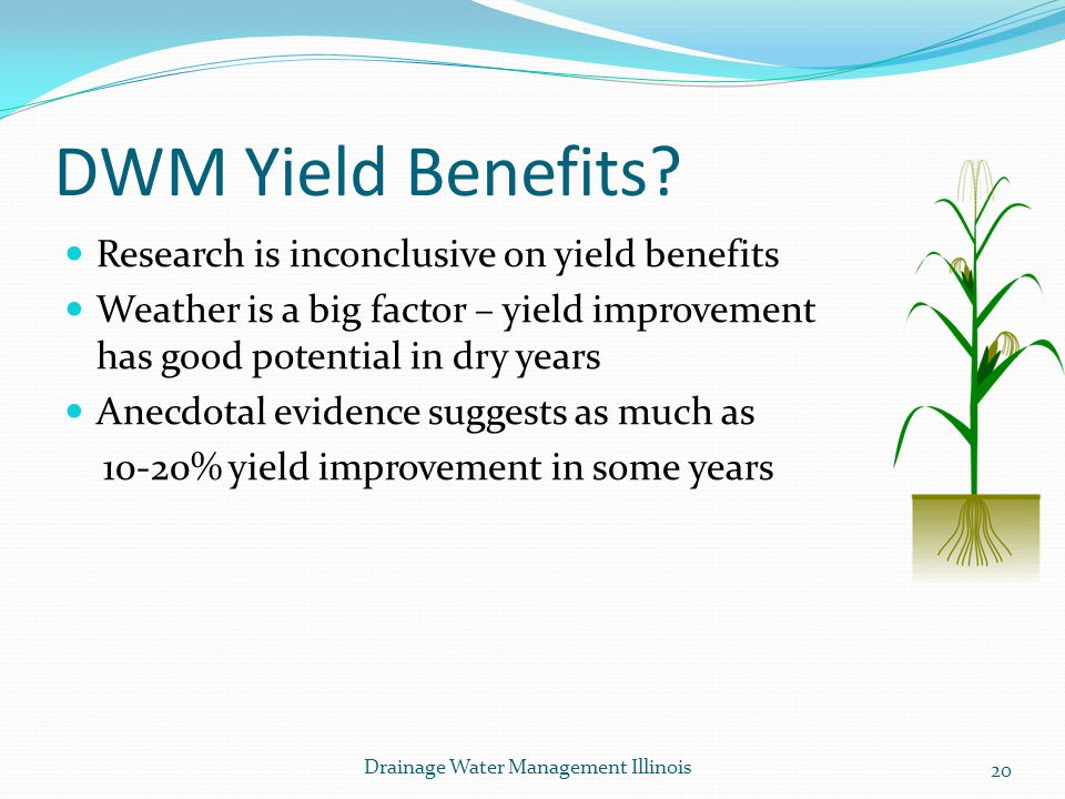 DWM Yield Benefits Research is inconclusive on yield benefits