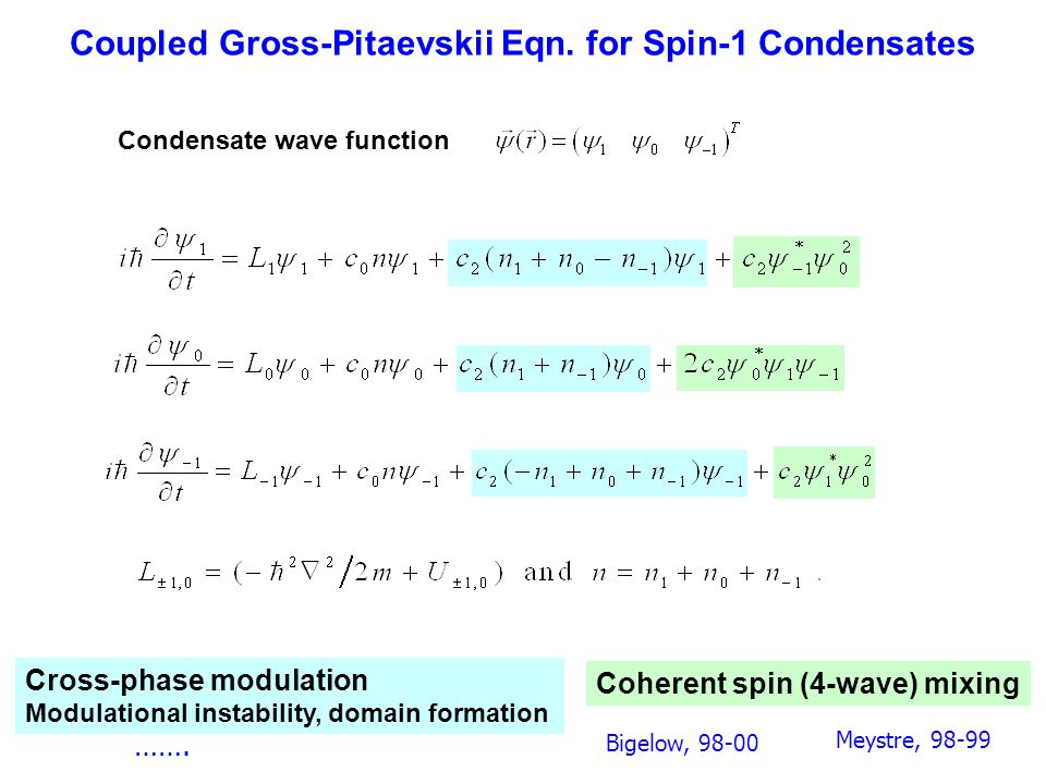 Coupled Gross-Pitaevskii Eqn. for Spin-1 Condensates