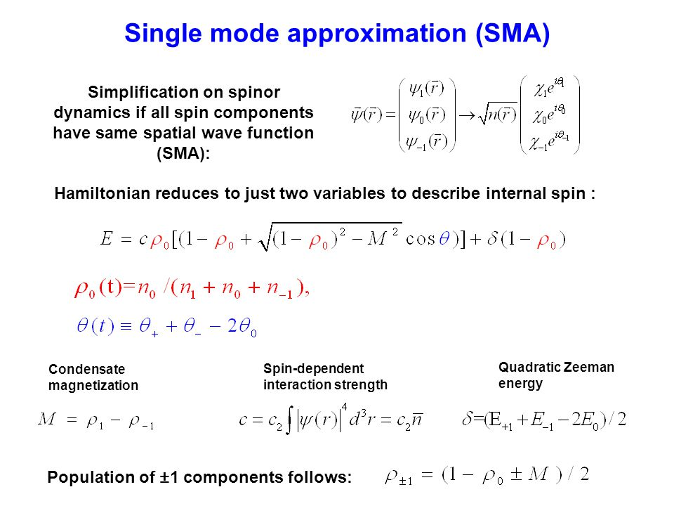 Single mode approximation (SMA)