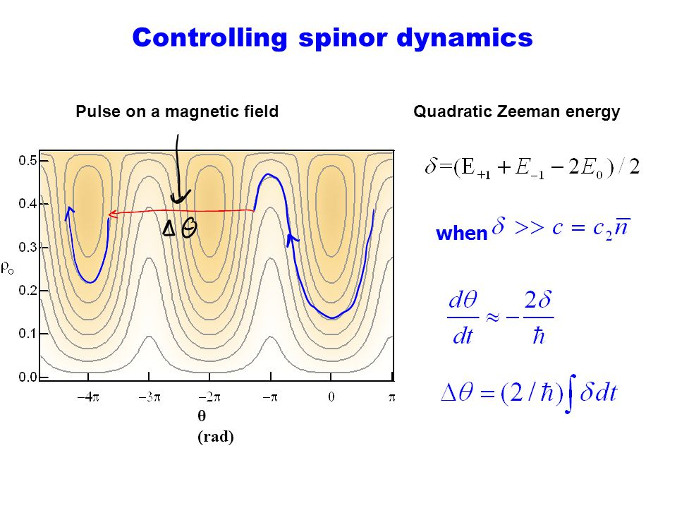 Controlling spinor dynamics