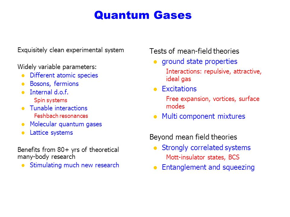 Quantum Gases Tests of mean-field theories ground state properties