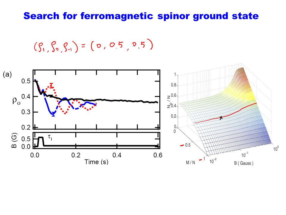 Search for ferromagnetic spinor ground state
