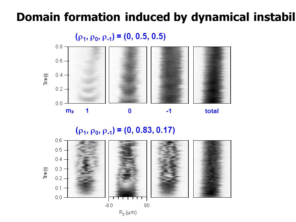 Domain formation induced by dynamical instability