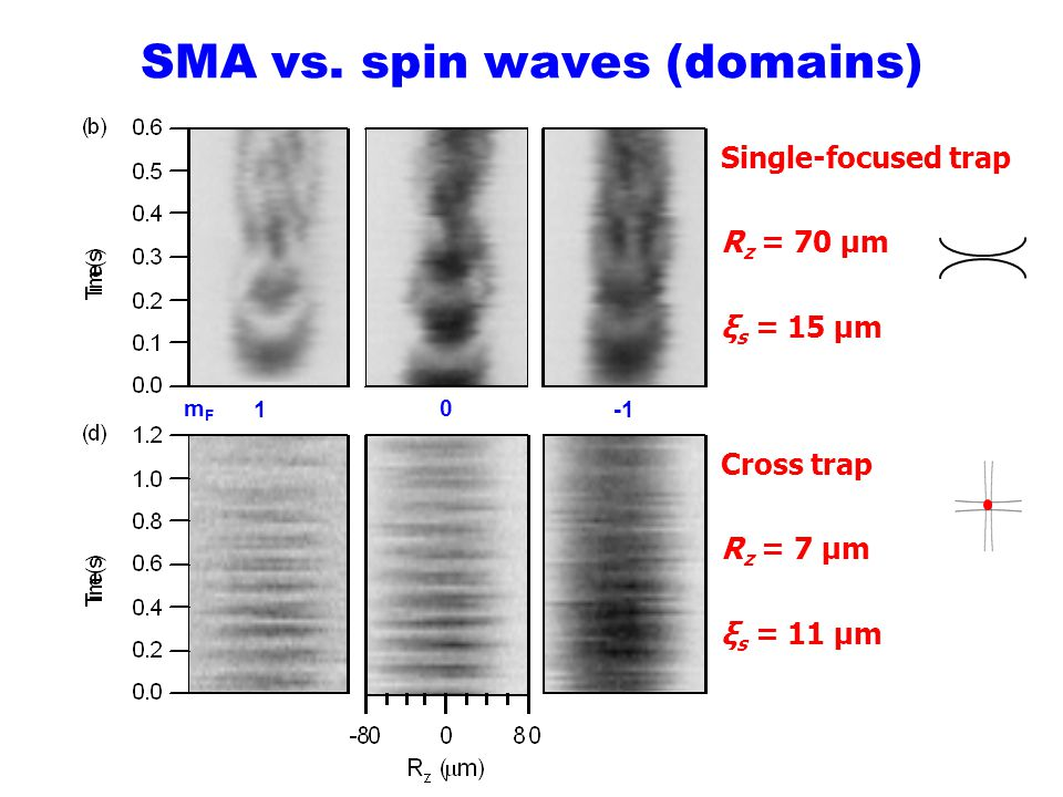 SMA vs. spin waves (domains)