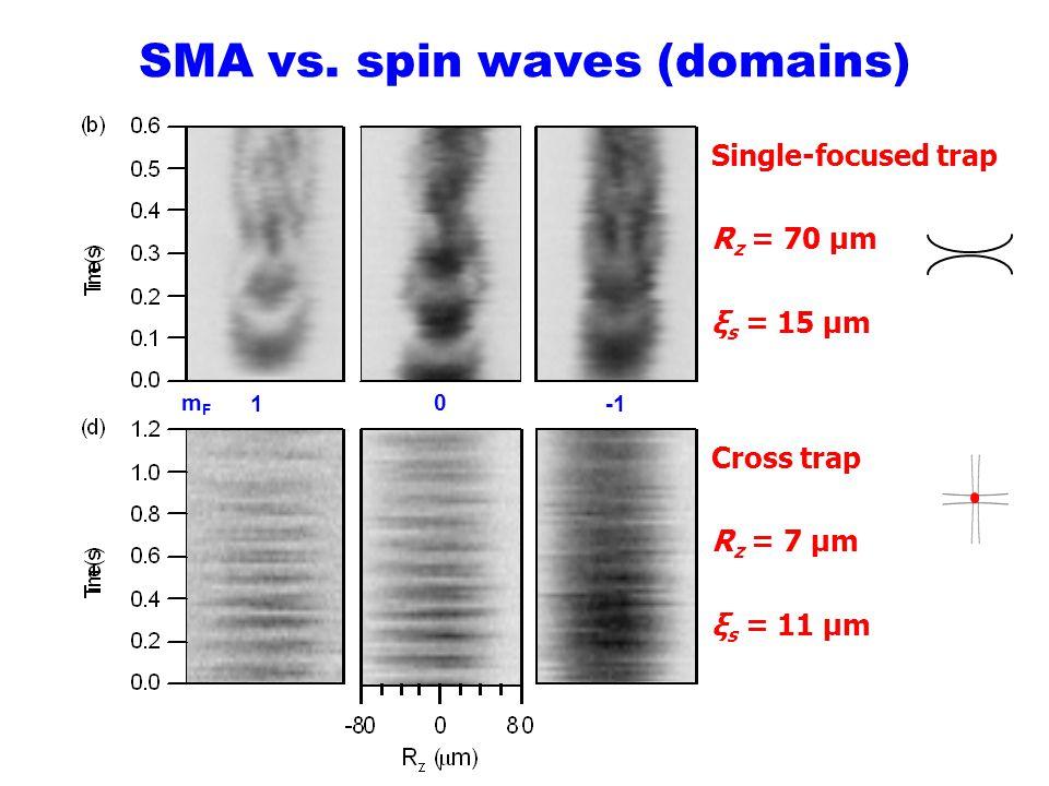 SMA vs. spin waves (domains)