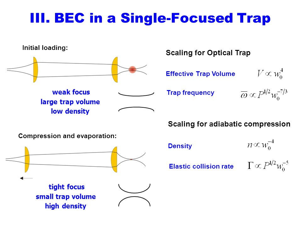 III. BEC in a Single-Focused Trap