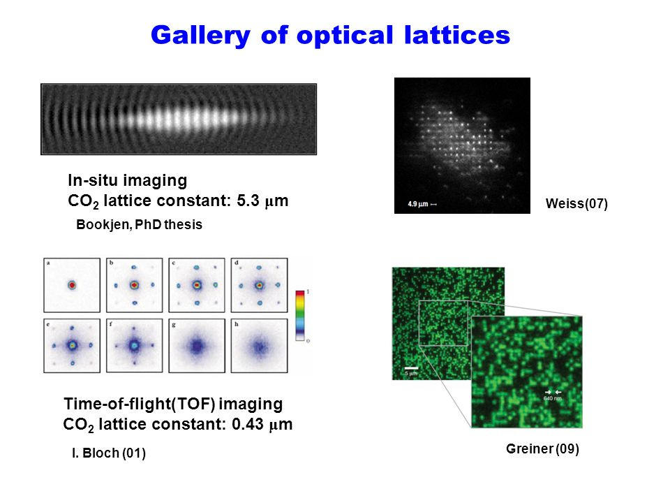 Gallery of optical lattices