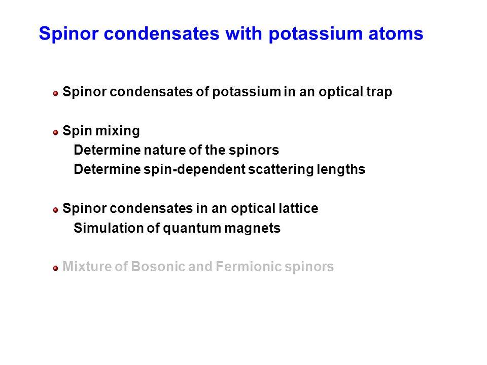 Spinor condensates with potassium atoms
