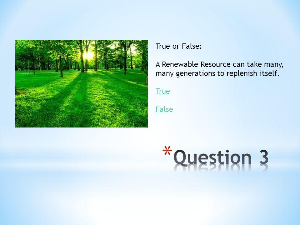 Question 3 True or False: