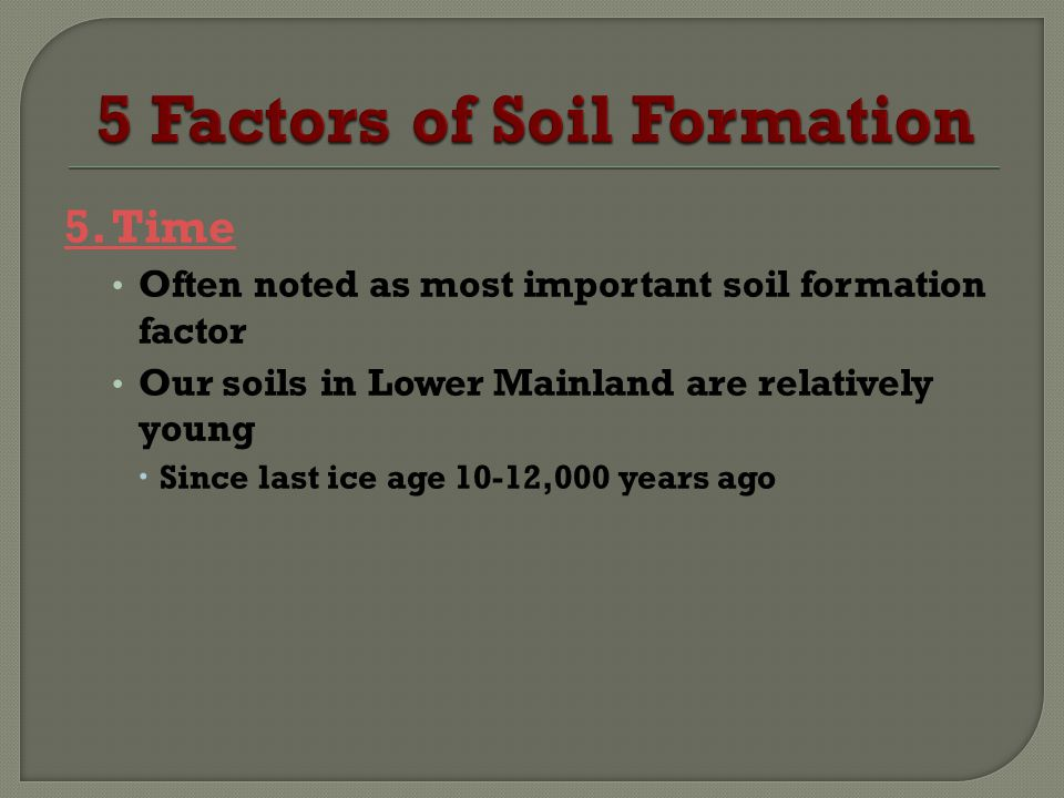 5 Factors of Soil Formation