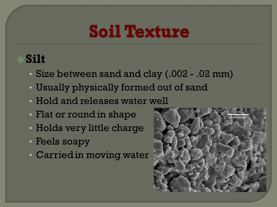 Soil Texture Silt Size between sand and clay (.002 - .02 mm)