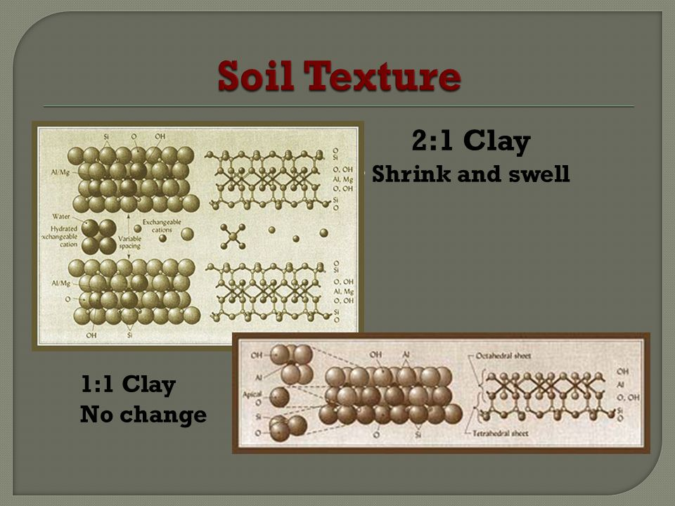 Soil Texture 2:1 Clay Shrink and swell 1:1 Clay No change