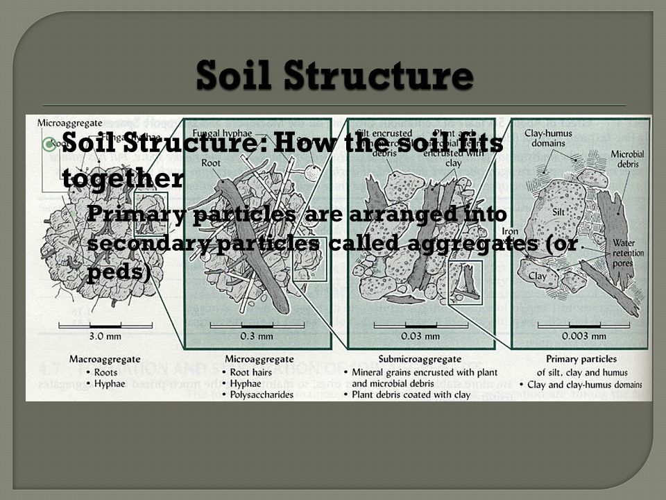 Soil Structure Soil Structure: How the soil fits together