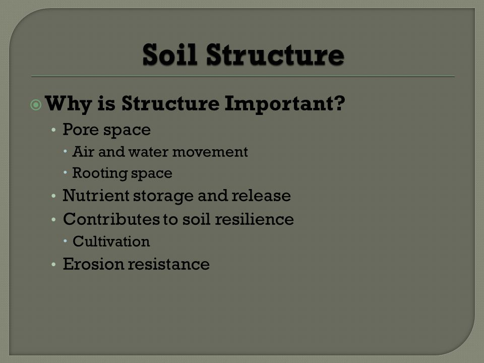 Soil Structure Why is Structure Important Pore space