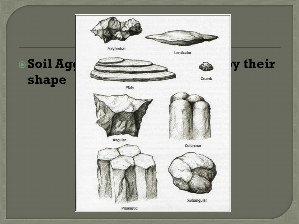 Soil Structure Soil Aggregates are classified by their shape