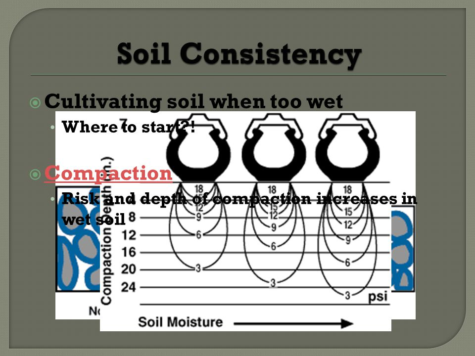 Soil Consistency Cultivating soil when too wet Compaction