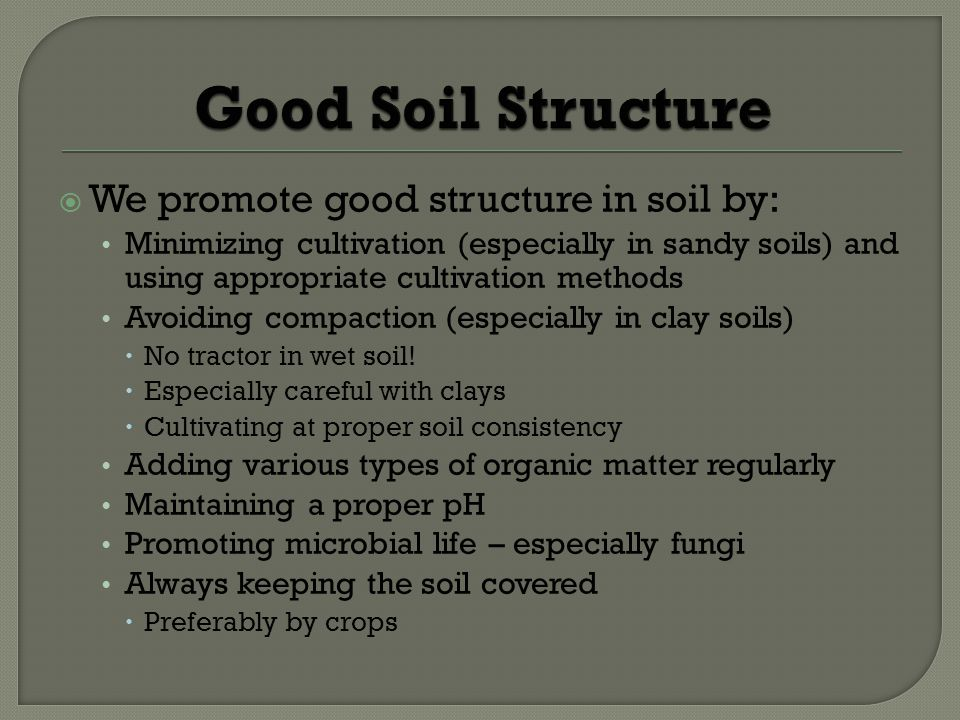 Good Soil Structure We promote good structure in soil by: