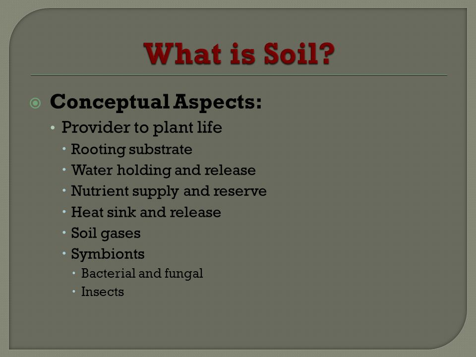 What is Soil Conceptual Aspects: Provider to plant life