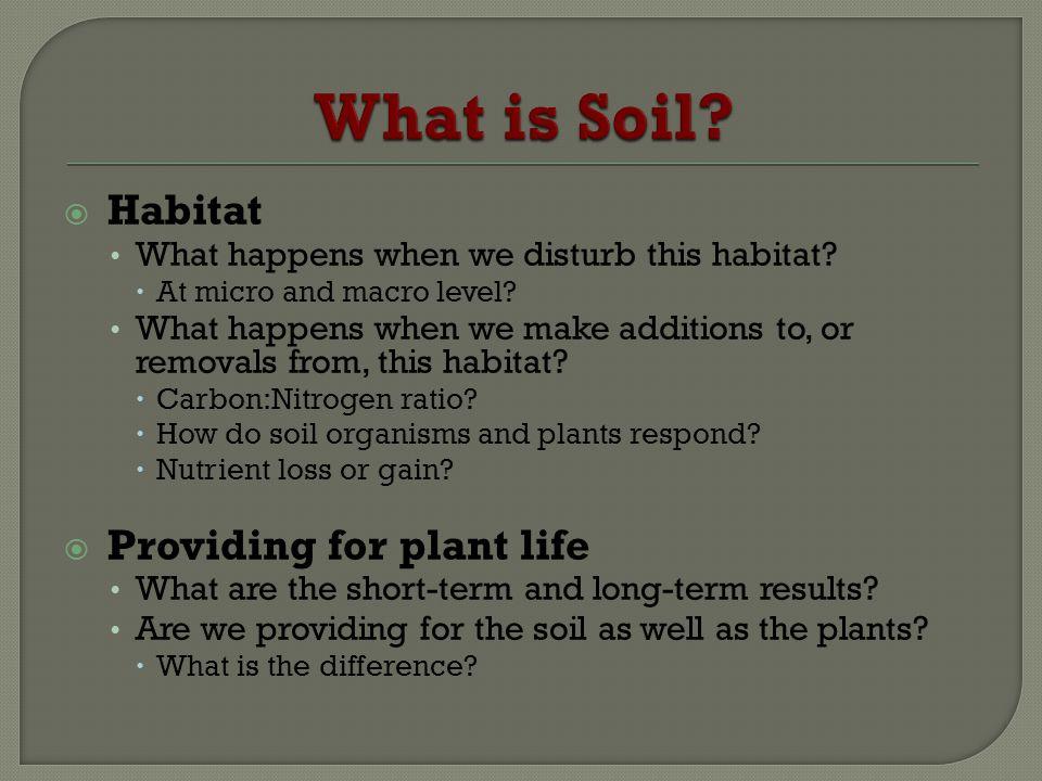 What is Soil Habitat Providing for plant life