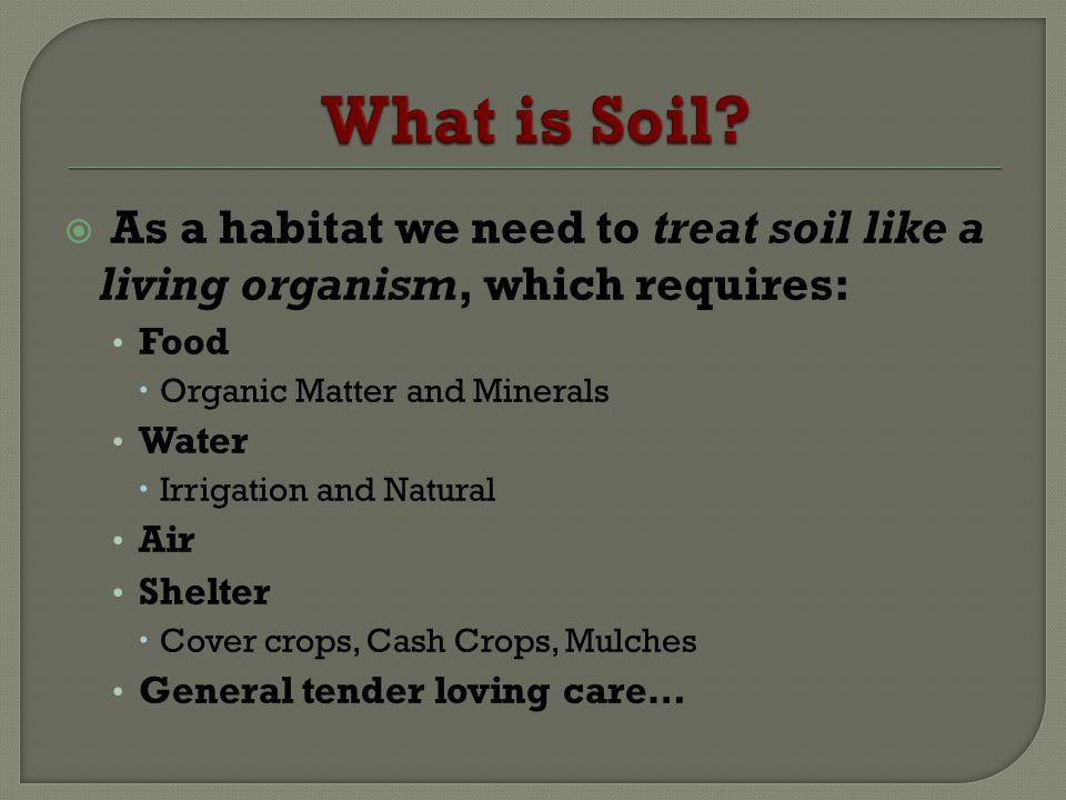 What is Soil As a habitat we need to treat soil like a living organism, which requires: Food. Organic Matter and Minerals.
