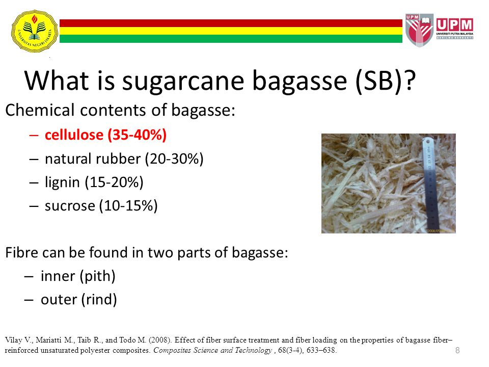 What is sugarcane bagasse (SB)