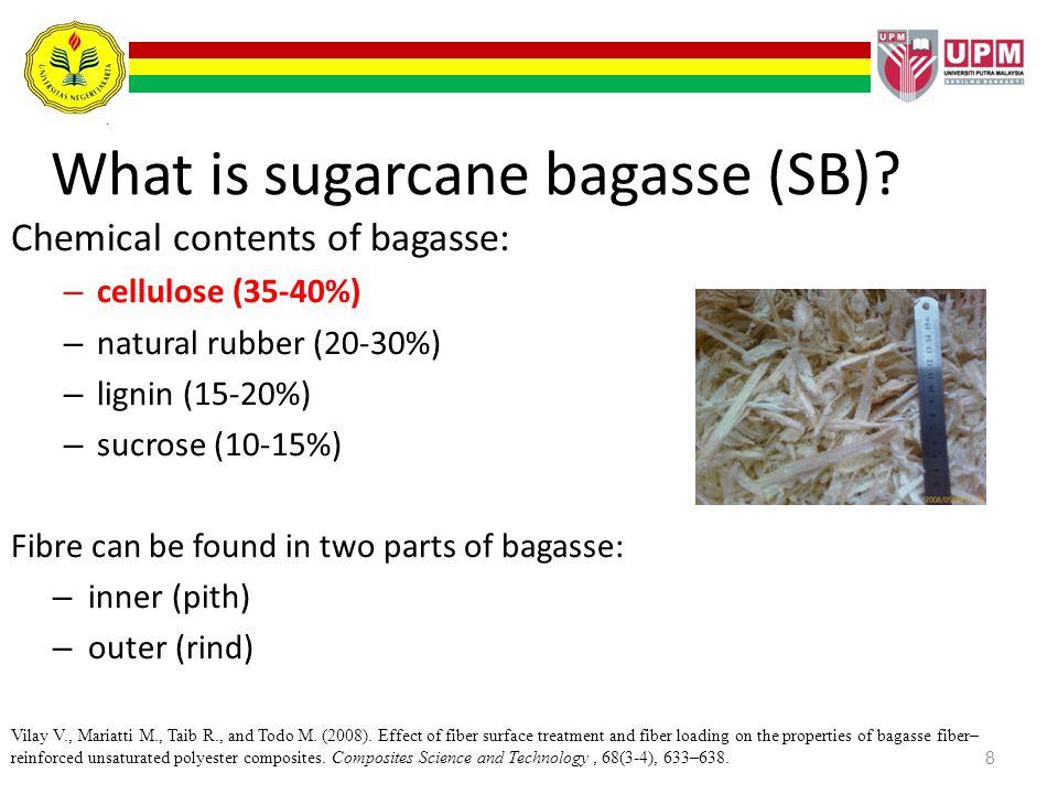 What is sugarcane bagasse (SB)