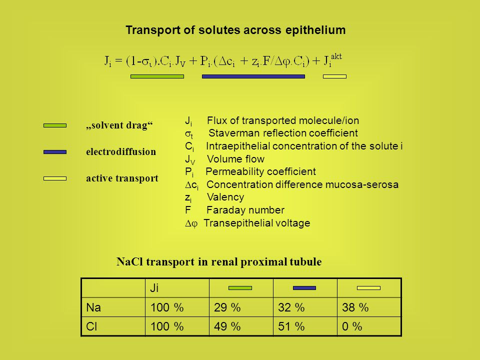 Transport of solutes across epithelium
