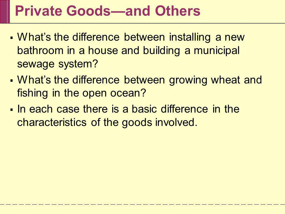 Private Goods—and Others