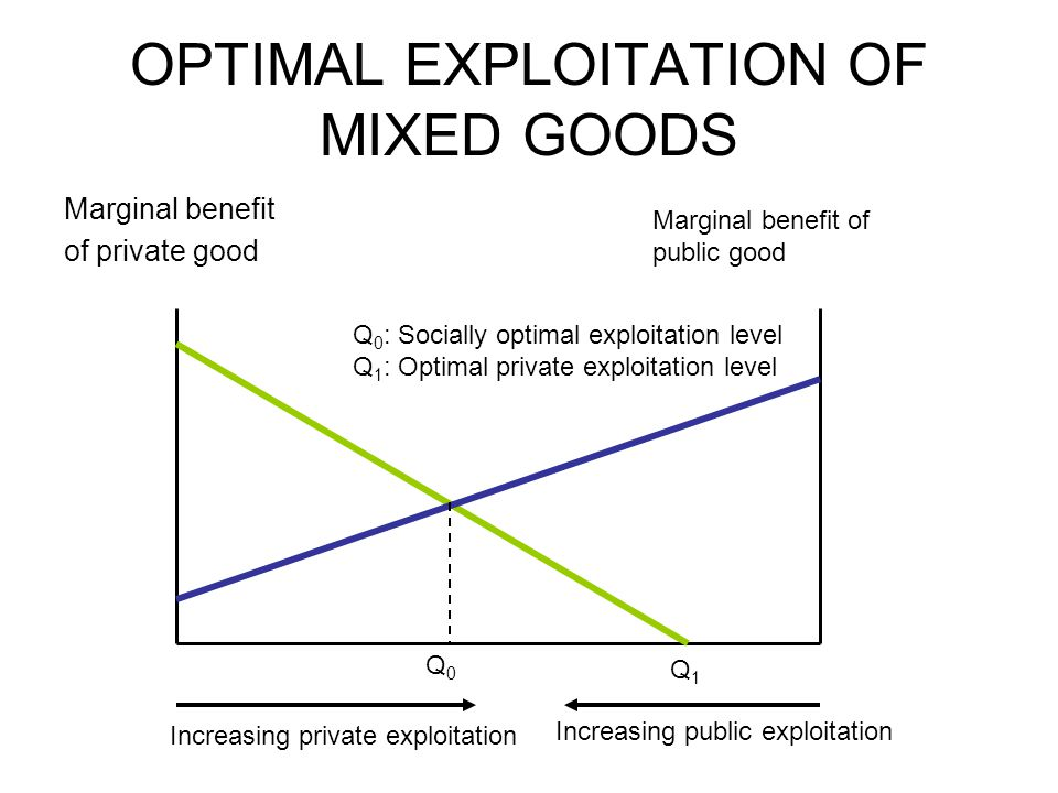 OPTIMAL EXPLOITATION OF MIXED GOODS