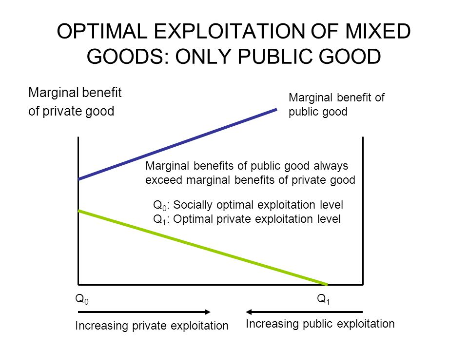 OPTIMAL EXPLOITATION OF MIXED GOODS: ONLY PUBLIC GOOD