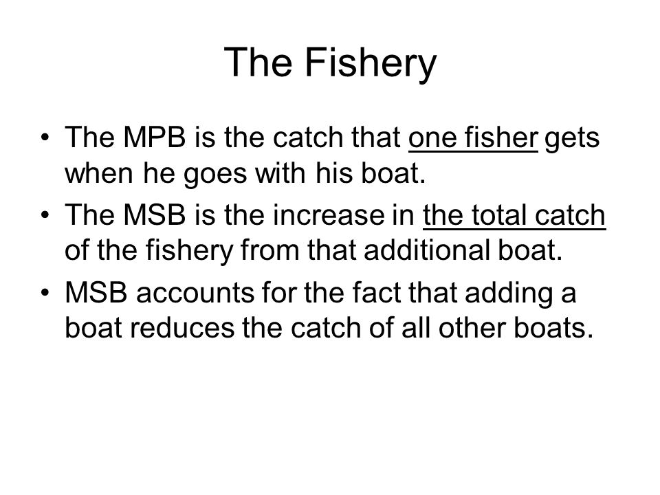 The Fishery The MPB is the catch that one fisher gets when he goes with his boat.