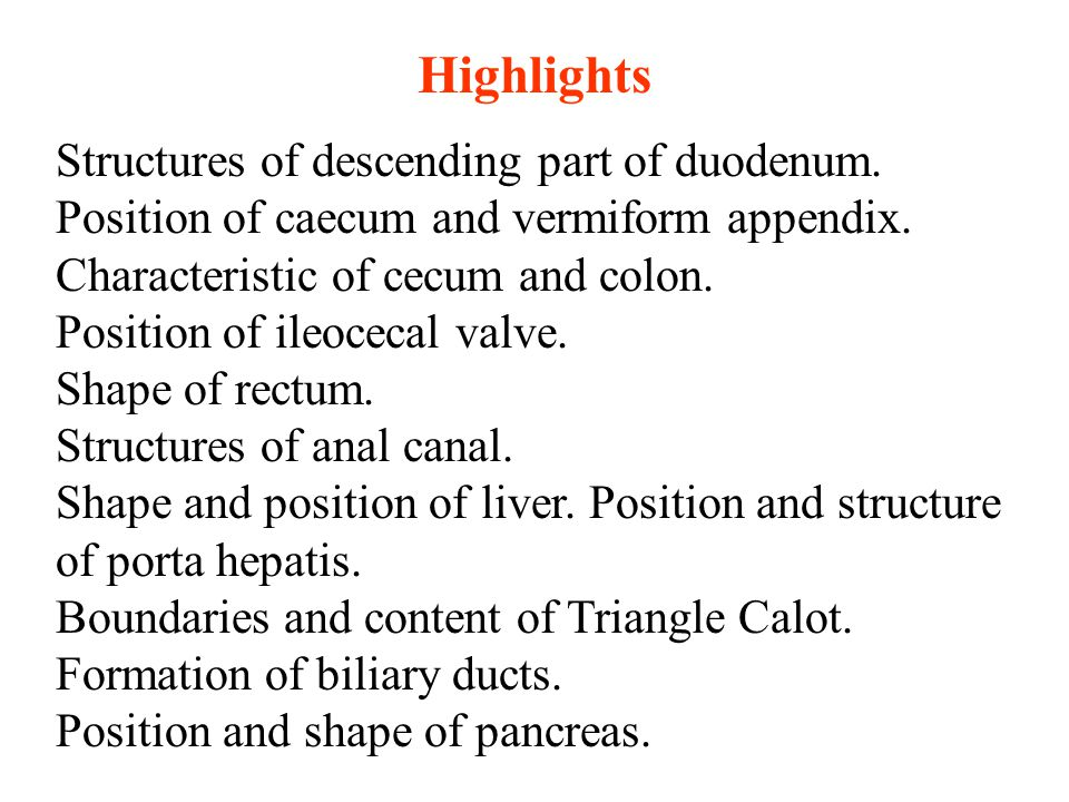 Highlights Structures of descending part of duodenum.