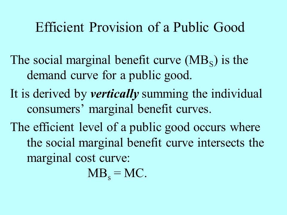 Efficient Provision of a Public Good