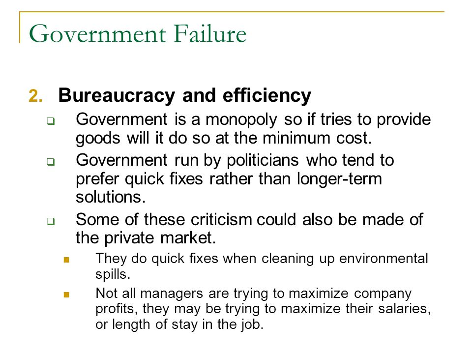 Government Failure Bureaucracy and efficiency