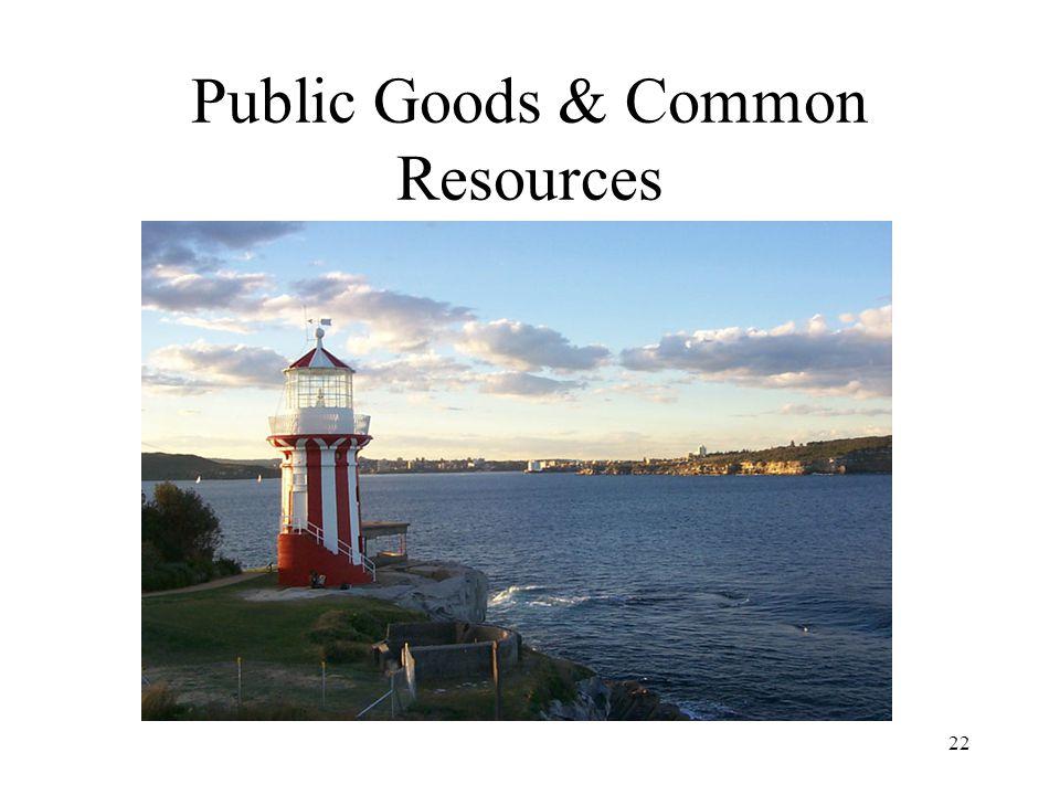 Public Goods & Common Resources