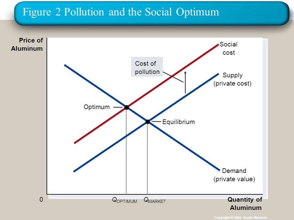 Figure 2 Pollution and the Social Optimum