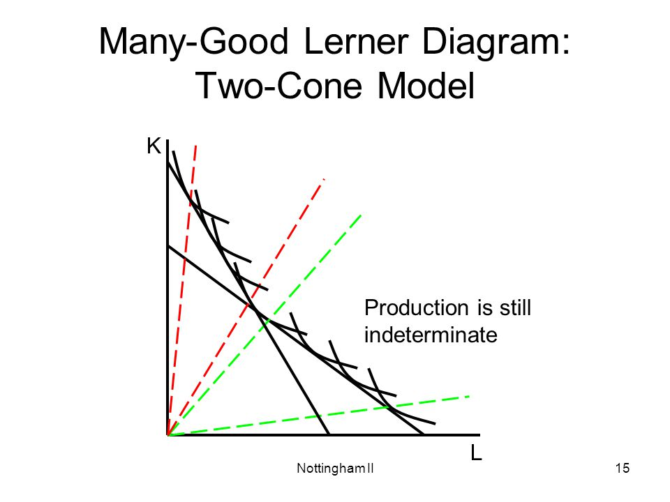 Many-Good Lerner Diagram: Two-Cone Model