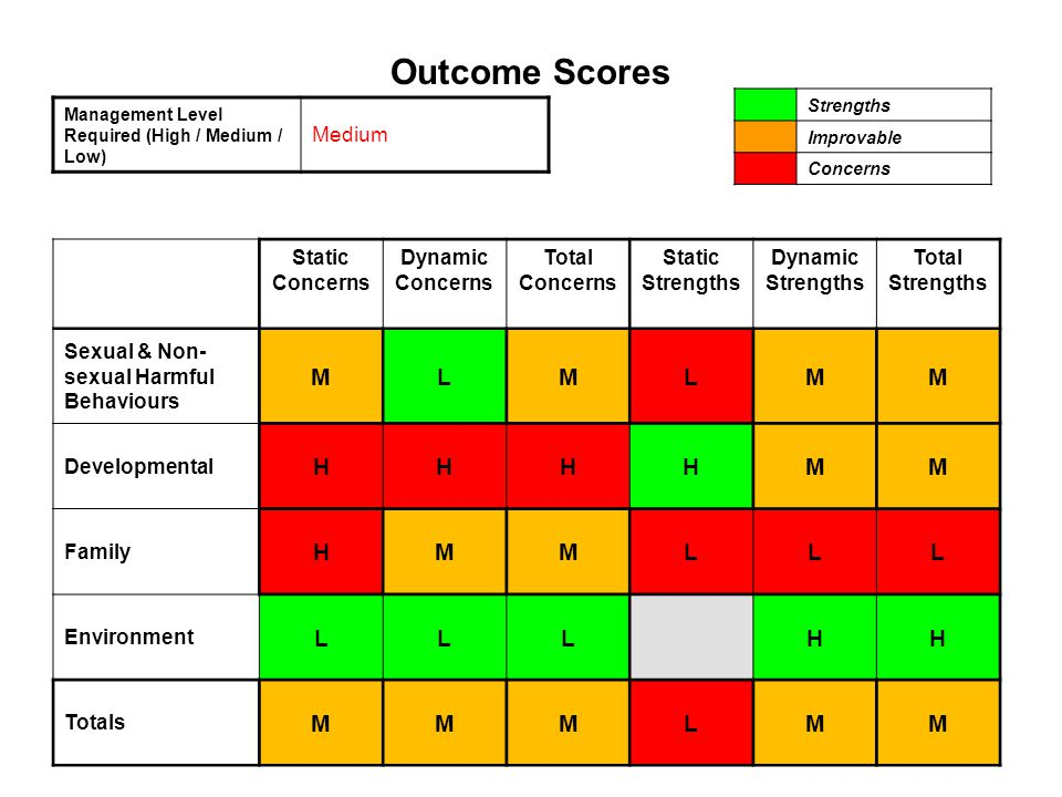Outcome Scores M L H Medium Static Concerns Dynamic Total Strengths