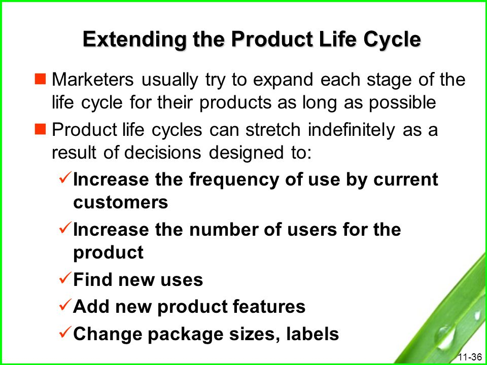 Extending the Product Life Cycle