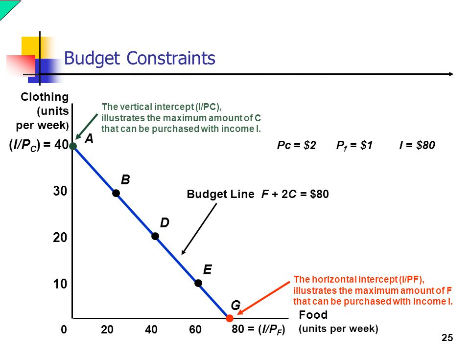 Budget Constraints A (I/PC) = 40 B 30 D 20 E 10 G Clothing (units