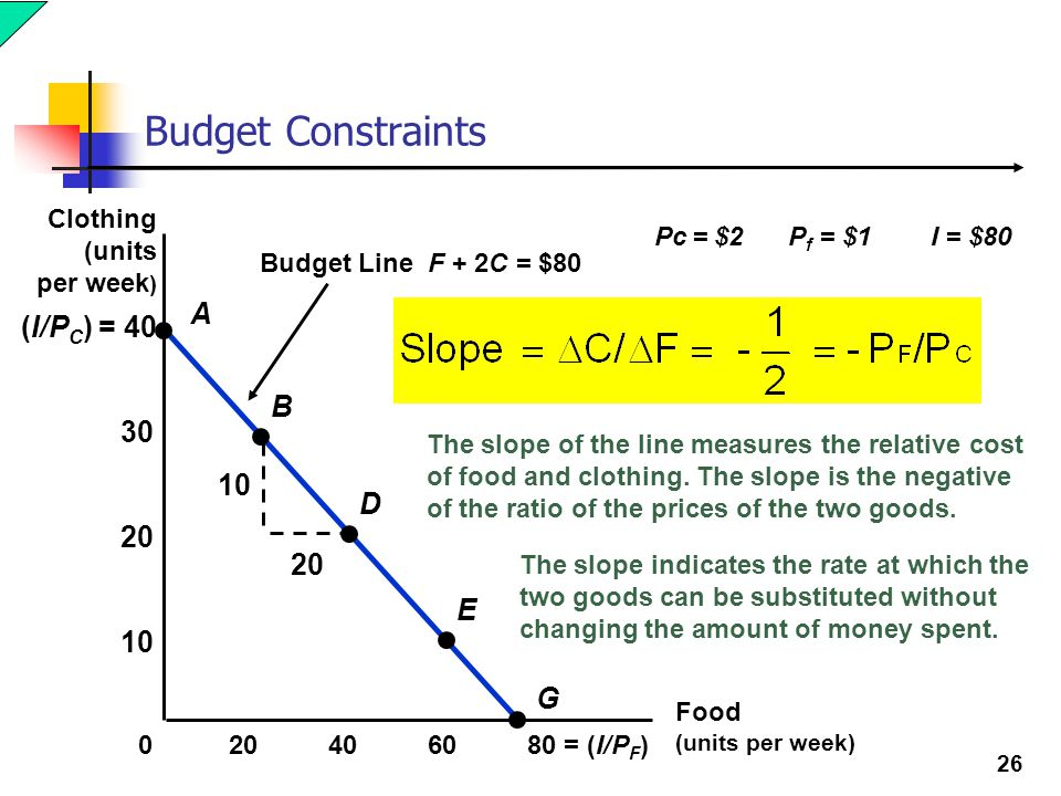 Budget Constraints A (I/PC) = 40 B 30 10 D 20 20 E 10 G Clothing