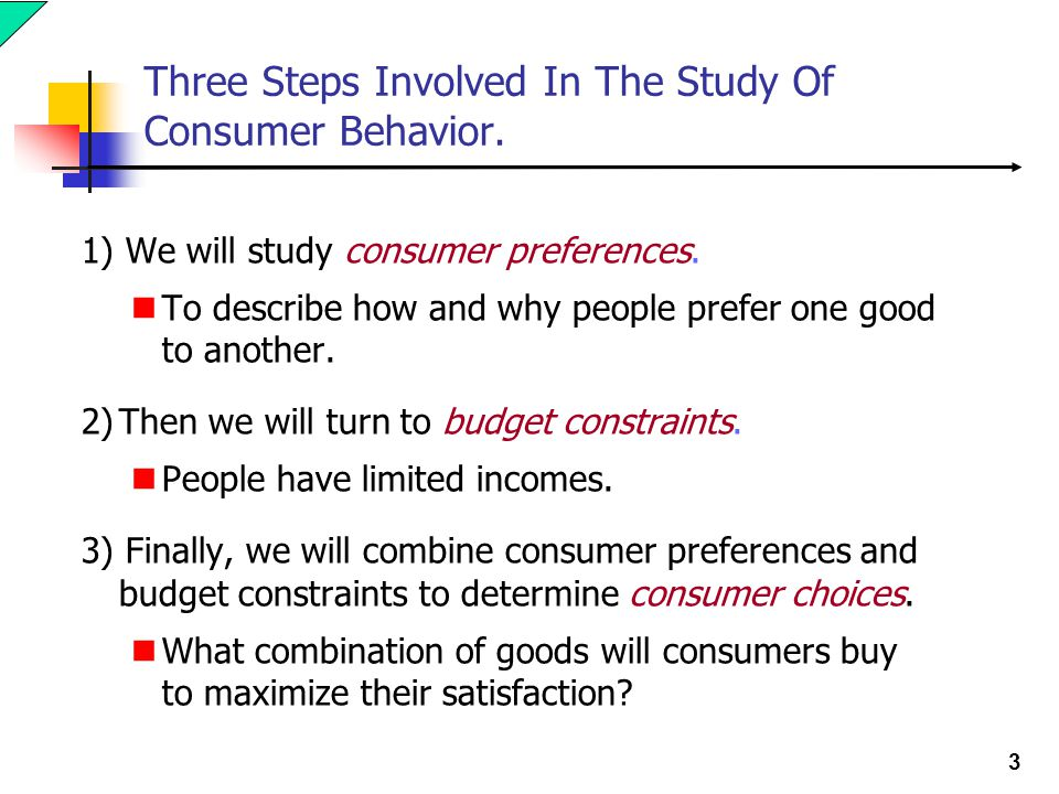 Three Steps Involved In The Study Of Consumer Behavior.
