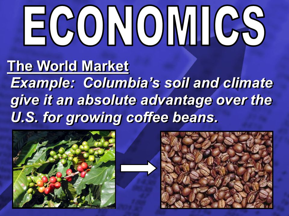 ECONOMICS The World Market.
