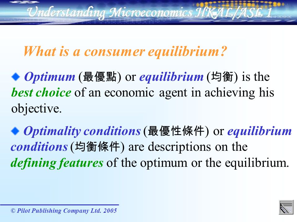 What is a consumer equilibrium