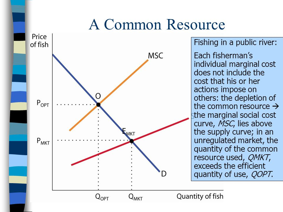 A Common Resource Fishing in a public river: